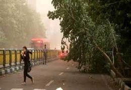 هشدار هواشناسی بابت طوفان امروز در تهران + فیلم