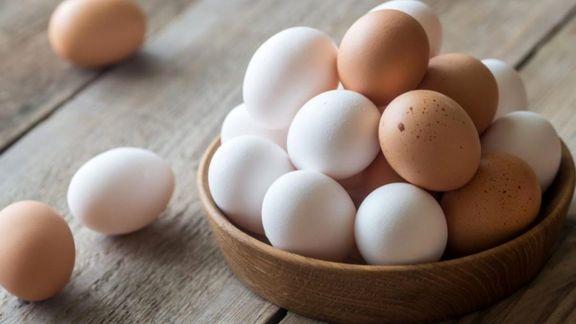 برای تأمین تخم مرغ شب عید هیچ مشکلی وجود ندارد