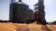 وزارت کشاورزی نرخ خرید تضمینی گندم را پیشنهاد داد