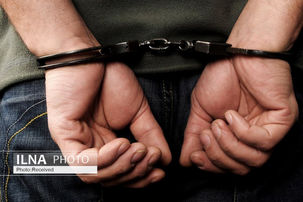 عامل تحریک افکار عمومی در فضای مجازی دستگیر شد