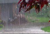 رئیس مرکز خشکسالی: بارش های آذر بیش از نرمال خواهد بود