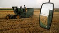 خرید تضمینی گندم با قیمت هر کیلو 4 هزار تومان آغاز شد
