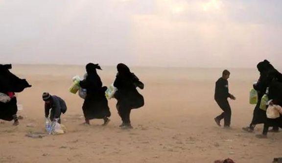 ۸۴  غیرنطامی هنگام فرار از دست داعش جان خود را از دست دادند