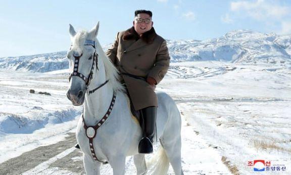 کره شمالی از روسیه اسب های زینتی خریداری کرد