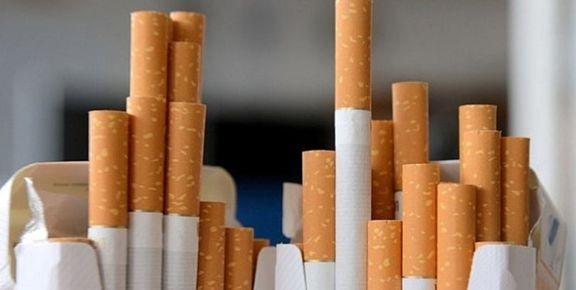 مدیرعامل دخانیات: صنعت دخانیات باید مورد بررسی تفحص قرار گیرد
