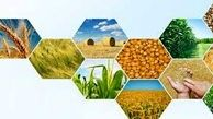 کشاورزان به پشتوانه محصولات خود، میتوانند از بانکها تسهیلات دریافت کنند