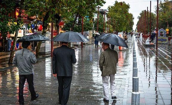 قیمت انواع چتر
