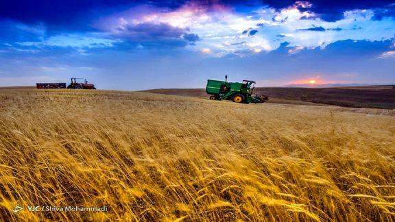 واردات ۲ میلیون و ۳۰۰ هزار تن گندم برای تامین ذخایر استراتژیک