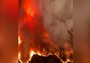 فیلمی از  آتش سوزی ویرانگر استرالیا