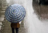 سامانه بارشی جدید روز جمعه وارد کشور می شود / بارش باران در بیشتر استان های کشور