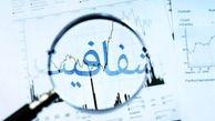 صورتهای مالی بانکهای دولتی باید شفاف انتشار شود