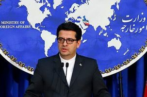 سخنگوی وزارت خارجه: کاری که مرزبانی های آمریکا با ایرانی ها انجام داد زیرپا گذاشتن حقوق افراد است