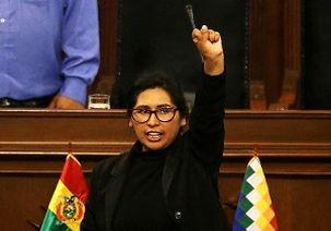 حزب جنبش سوسیالیسم بولیوی، رئیس جدید سنای این کشور شد