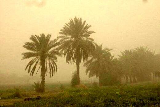 توفان سیستان و بلوچستان 264 نفر را راهی بیمارستان کرد