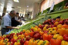 دلایل افزایش قیمت گوجه فرنگی اعلام شد