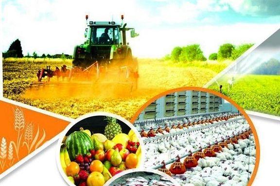 صادرات 18 محصول کشاورزی ممنوع شد