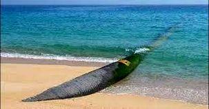 130 سانتی متر از سطح آب دریای خزر کاهش پیدا کرده است